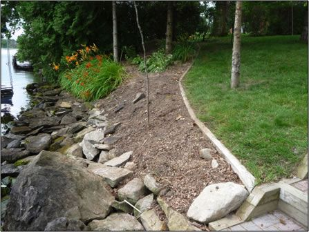 Example Shoreline Naturalization Project- Before