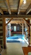 Silversides-inside-doorway-brighter