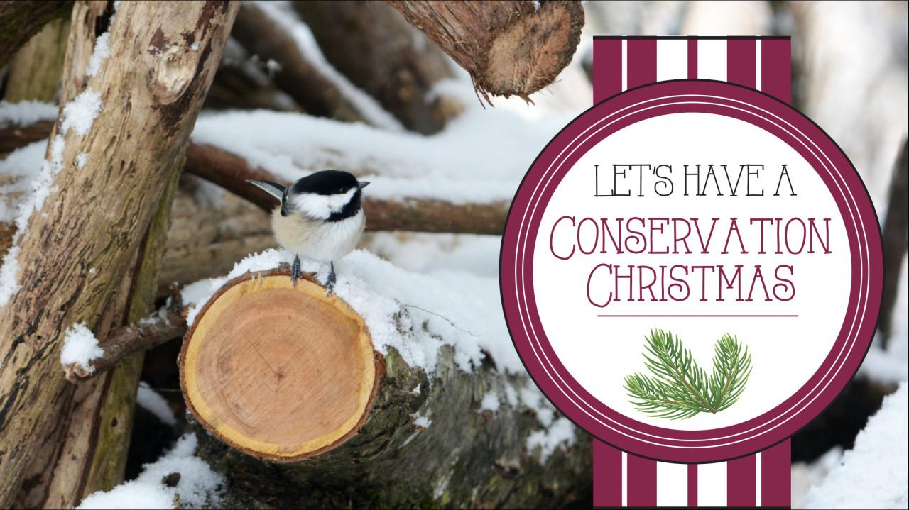 greenchristmas.blog