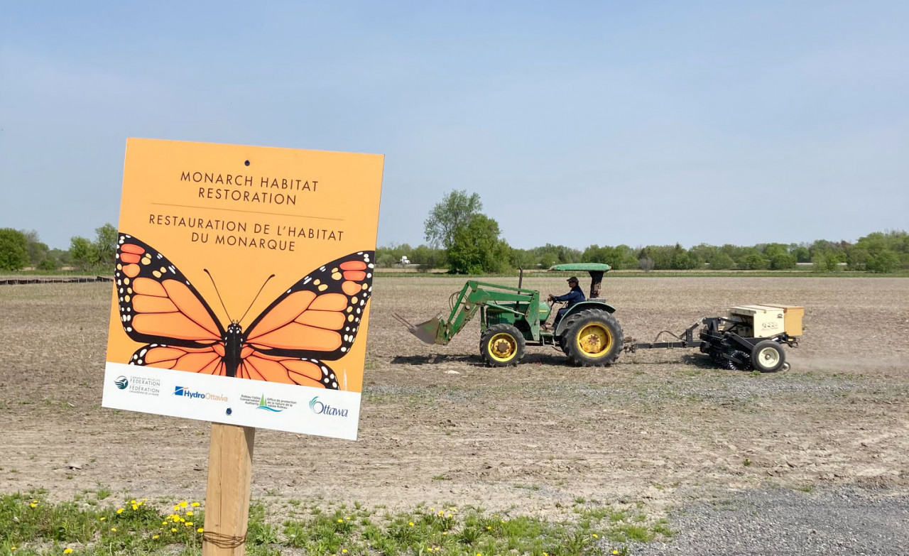 Buzz in the air as planting begins at Barrhaven pollinator meadow