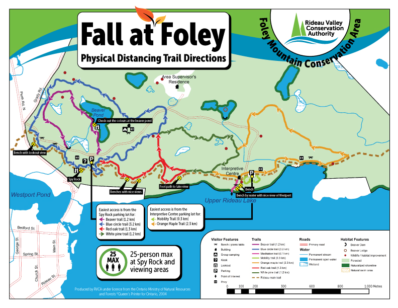 Foley Fall Colours MAP Small