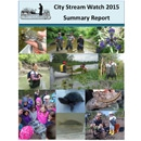 City Stream Watch