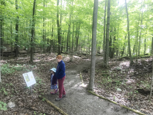Family fun comes to Foley Mountain through new story trail adventure