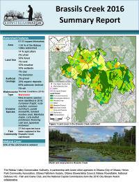 Brassils Creek - 2016  Summary Report