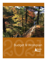 2021 Budget and Work Plan