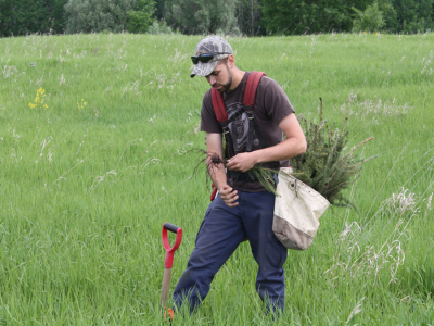 RVCA Plants Over 275,000 Trees This Spring!