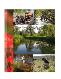 City Stream Watch 2006 - Annual Report
