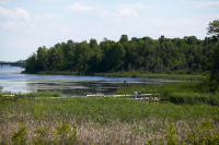 Blog launch: The River Reed to cover life in the Rideau Valley watershed