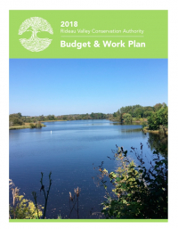 2018 Budget and Work Plan