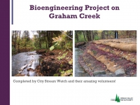 Bioengineering Project on Graham Creek