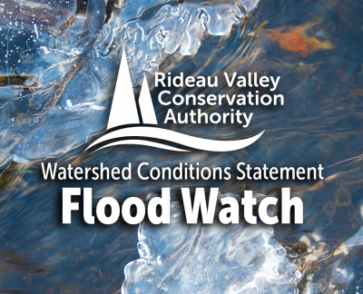 Cold Weather Causing Ice Jams and Some Localized Flooding in Rideau Valley