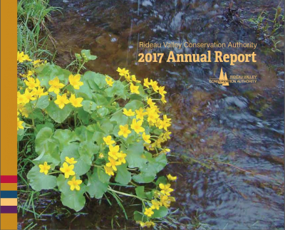 RVCA Celebrates World Water Day with Release of  2017 Annual Report