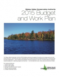 2015 Budget and Work Plan