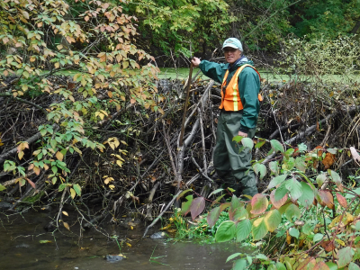 Volunteer makes a splash with conservation authority