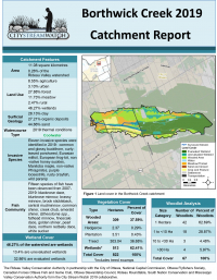 Borthwick Creek Catchment Report 2019