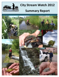 City Stream Watch 2012 Summary Report