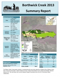 Borthwick Creek 2013 - Summary Report