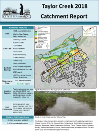 City Stream Watch 2018 Taylor Creek