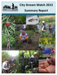 City Stream Watch 2013 - Summary Report