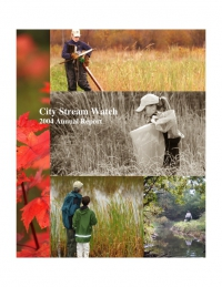 City Stream Watch 2004 - Annual Report