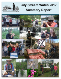 City Stream Watch 2017 Summary Report