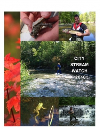 City Stream Watch 2010 - Annual Report