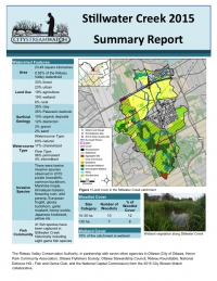 Stillwater Creek - 2015 Summary Report